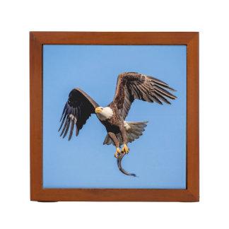 Porta-lápis Águia americana com um peixe