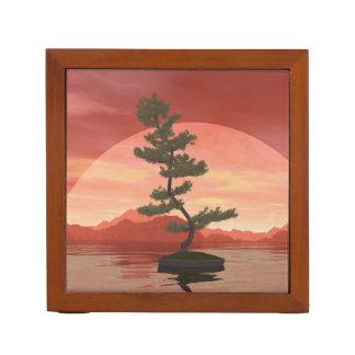 Porta-lápis Árvore dos bonsais do pinho escocês - 3D rendem