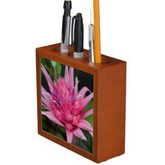Porta Lápis Beleza cor-de-rosa