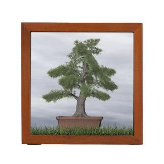 Porta-lápis Bonsais da árvore do zimbro do templo - 3D rendem