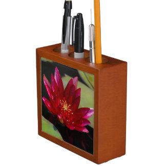 Porta Lápis Lotus magenta Waterlily