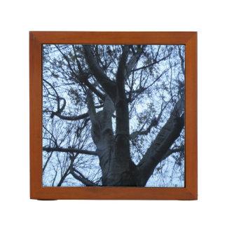 Porta-lápis Mesa da fotografia da silhueta da árvore arrumada