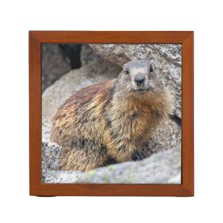 Porta-lápis Organizador alpino da mesa da marmota