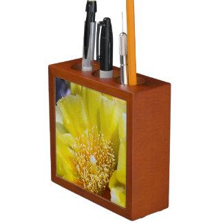 Porta-lápis Organizador da mesa da flor do cacto de pera