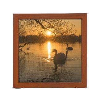 Porta Lápis Por do sol com cisne