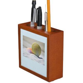Porta Lápis Seashell e organizador da mesa do por do sol