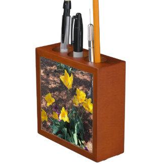 Porta-lápis tipo colorido amarelo flores da tulipa no
