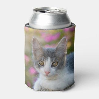 Porta-lata Amantes macios Bawdle do gato da foto do gatinho