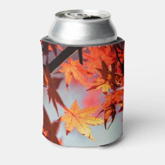 Porta-lata Árvore de bordo vermelha das folhas de outono da