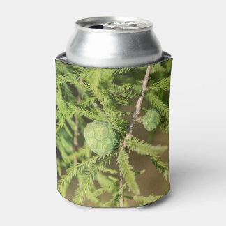 Porta-lata Cone da semente de Cypress calvo