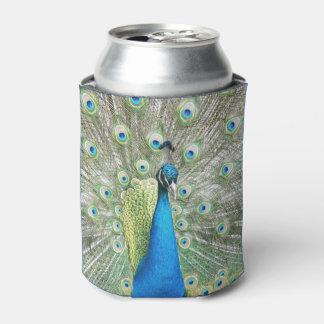 Porta-lata Foto da plumagem do pavão