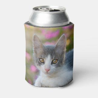 Porta-lata Foto macia Bawdle do gatinho bicolor novo bonito