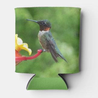 Porta-lata Fotografia Rubi-Throated do pássaro do colibri