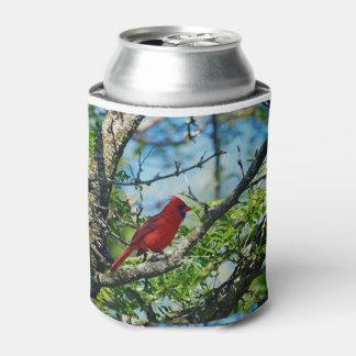 Porta-lata Fotografia selvagem cardinal vermelha do pássaro