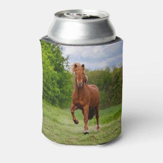 Porta-lata Pônei islandês no _engraçado Bawdle do cavalo da