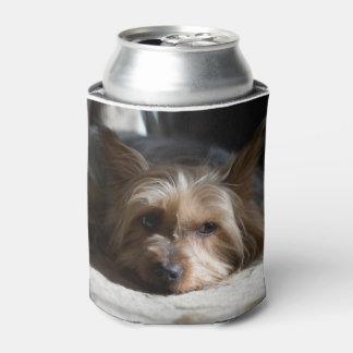 Porta-lata yorkshire/Terrier de seda enlata e engarrafa