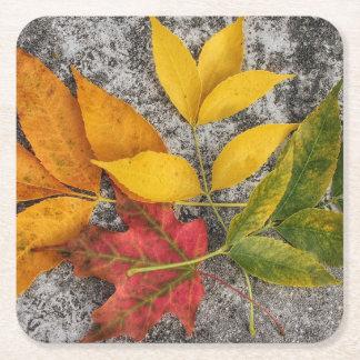 Portas copos multicoloridos das folhas porta-copo de papel quadrado