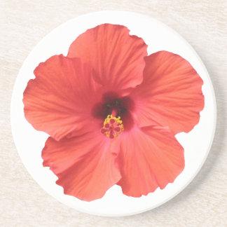 Portas copos vermelhas do hibiscus porta copos de arenito
