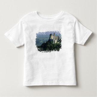 Portugal, Sintra, palácio de Pena, sobre Serra a Camiseta