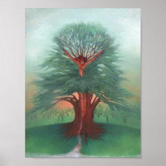 Poster A árvore da cura