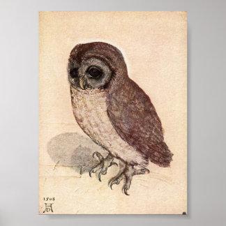 Pôster A coruja pequena por Albrecht Durer