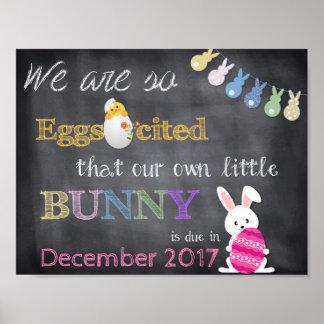 Pôster A gravidez da páscoa de Eggscited revela o anúncio