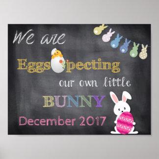 Pôster A gravidez da páscoa de Eggspecting revela o