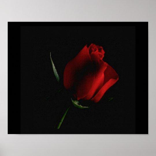 Poster A rosa vermelha Preto-adiciona sobre palavras se v