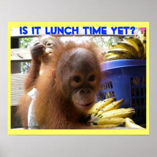 Poster Almoço dos bebês do orangotango