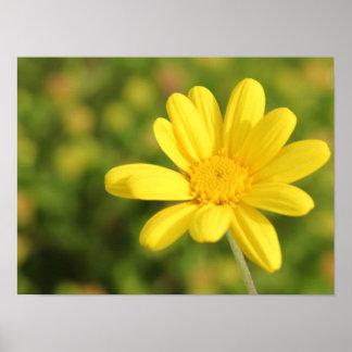 Poster amarelo feliz da flor A3