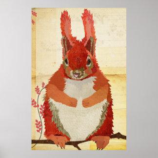 Poster ambarino da arte do esquilo