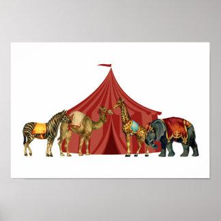 Poster Animais e barraca de circo