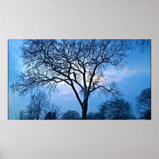Pôster Arte azul da árvore