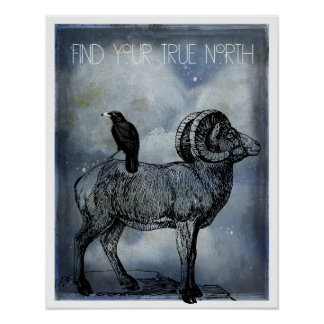 Pôster Arte dos carneiros e do corvo do Big Horn do norte