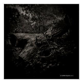 Pôster Árvore inoperante - poster da arte - câmera do