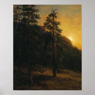 Pôster Árvores da sequóia vermelha por Albert Bierstadt