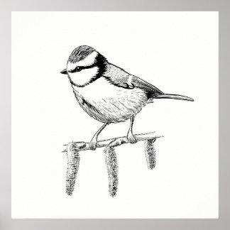 Poster Azul-melharuco da arte do poster/parede do pássaro