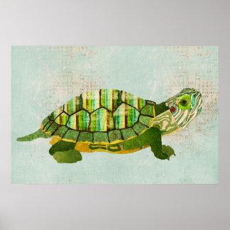 Poster Azure da arte da tartaruga do jade