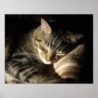 Poster Bela Adormecida