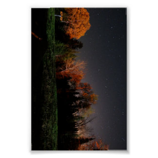 Poster Beleza na escuridão