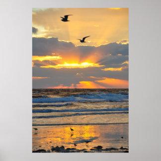 Poster bonito do cenário do nascer do sol da praia pôster