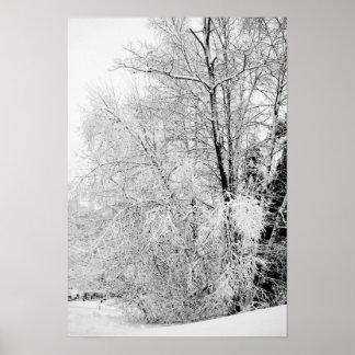 Pôster Brancos do inverno