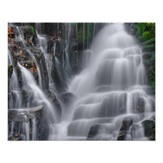 Poster Cachoeira