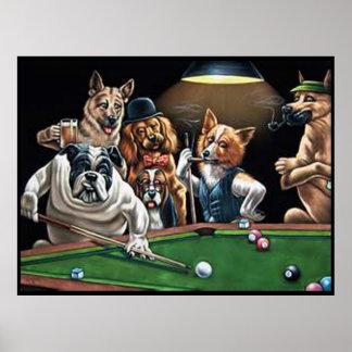 Pôster Cães que jogam a piscina - buldogue acima