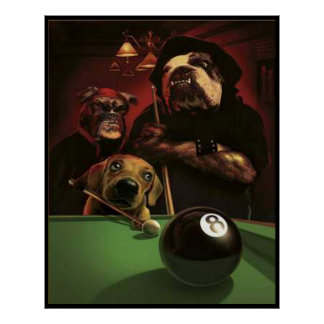 Pôster Cães que jogam a piscina - o Eightball