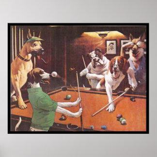 Pôster Cães que jogam a piscina - o lebreiro de risco