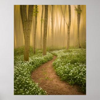 Pôster Caminhada no impressão/poster das madeiras