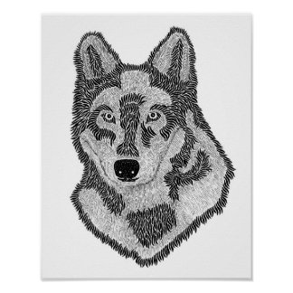 Poster Cara do lobo