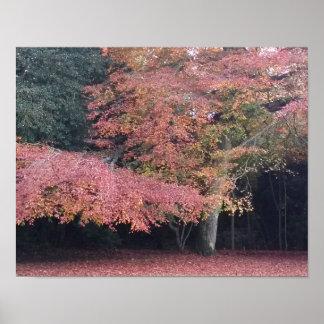Poster Cartaz decorativo do outono da árvore cor-de-rosa