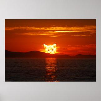 POSTER CAT SOLAR